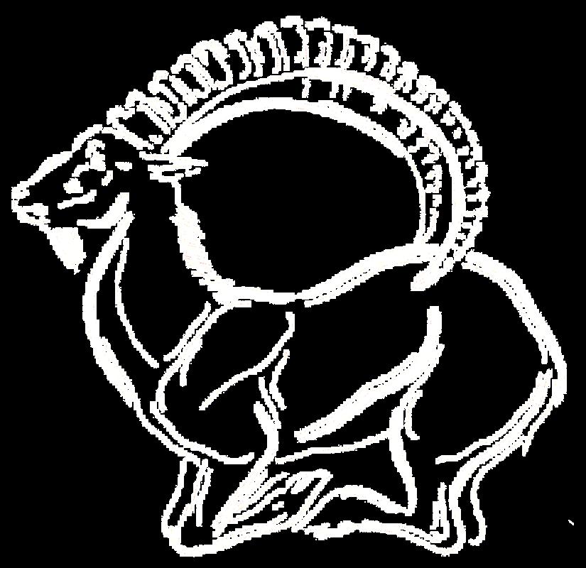 vadaszutak logo light