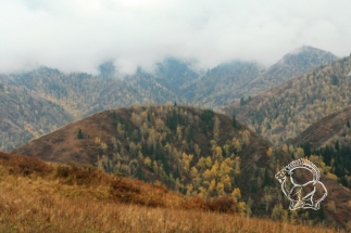 Kazahsztán vadászat