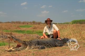 Ausztrália - bordás krokodil