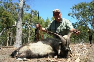 Ausztrália - vad kecske vadászat