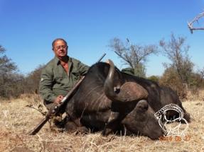 Dél-Afrika kafferbivaly vadászat