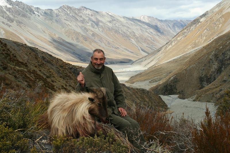 Új-Zéland vadászat, himalájai tahr