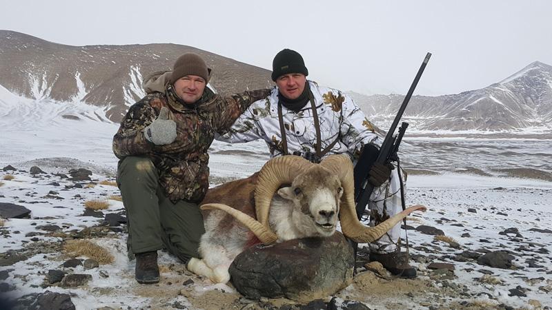 Tádzsikisztán vadászat, marco polo