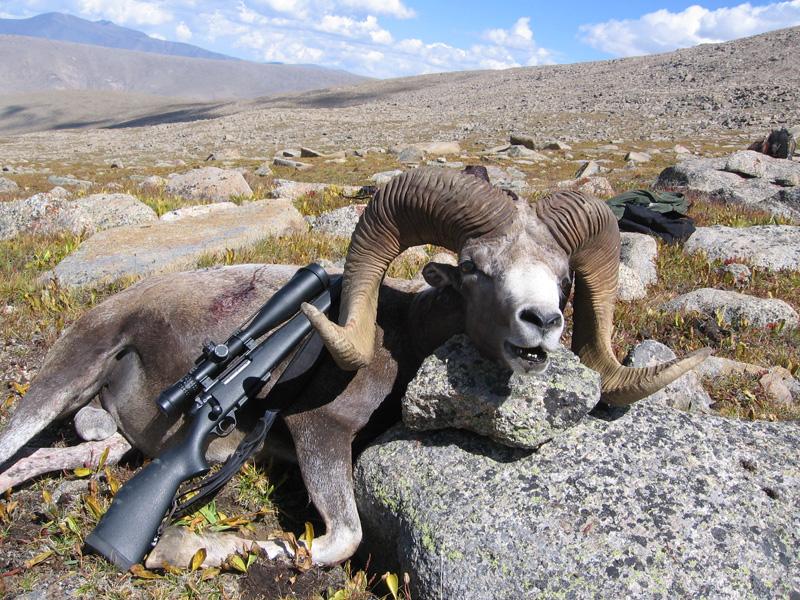 Mongólia argali vadászat