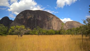Mozambik vadászat