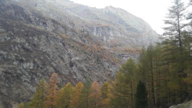Svájc vadászat