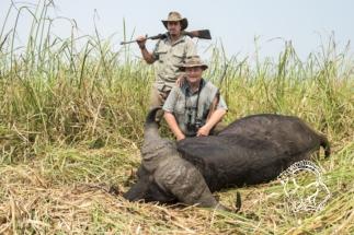 Mozambik kafferbivaly vadászat