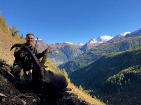 Svájc kőszáli kecske