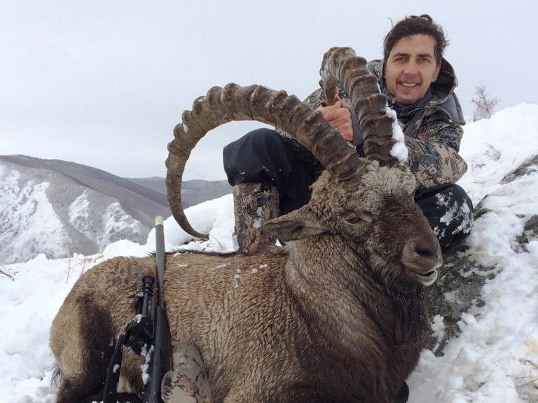 Hakaszföld, Oroszország, Altaj kőszáli kecske