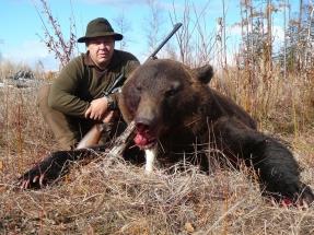 Oroszország, Kamcsatka, barnamedve