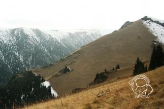Kazahsztán, vadászterület, maral