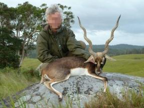 Blackbuck Ausztrália