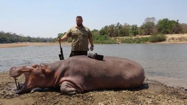víziló Zimbabwe