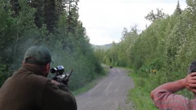 Fekete medve vadászat, Kanada vadászat