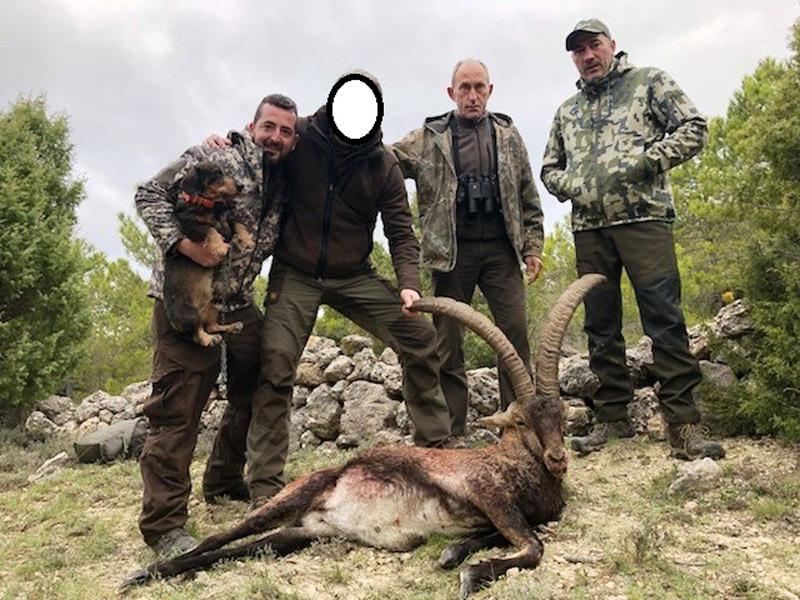 Spanyolország, beceite ibex vadászat