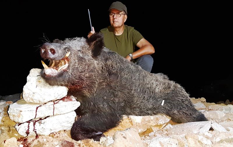 vaddisznó vadászat, Törökország